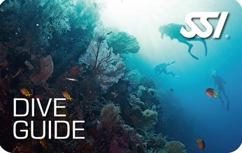Dive Guide SSI